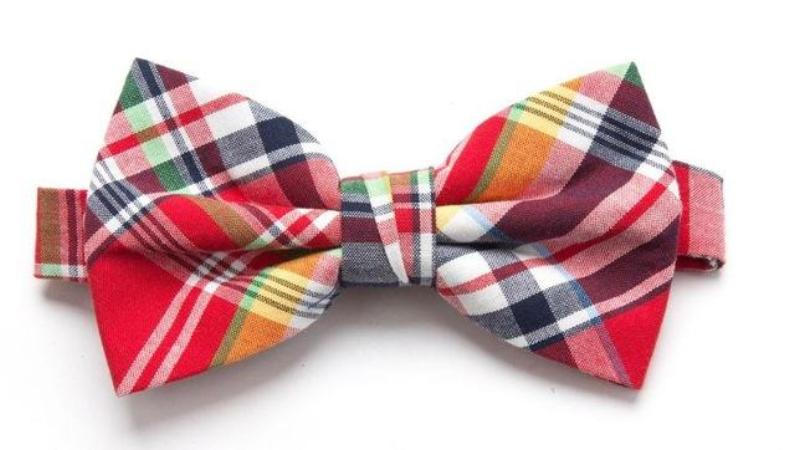 Pre-tied Red/Blue Plaid Cotton Bow Tie