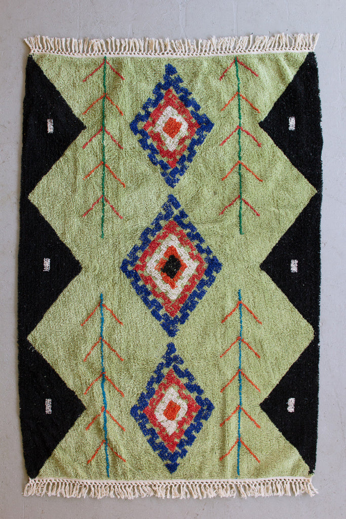 Green Rug With Fringe