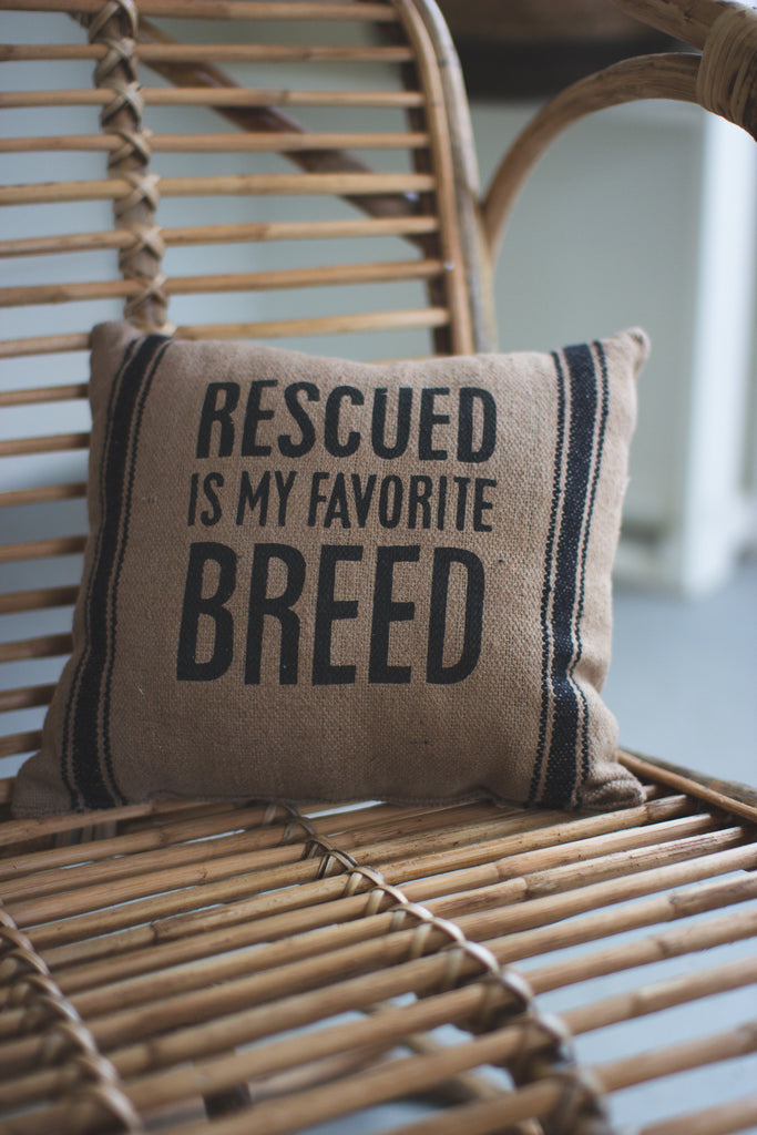 Rescued Pillow - Set of 2