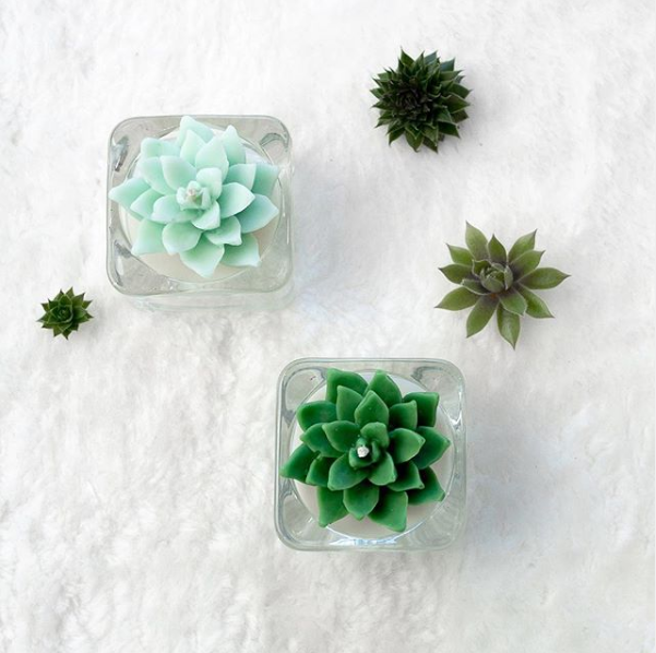 Green Succulent Tea Light Soy Candles
