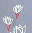 SMALL-LILY-GREY-PRINT