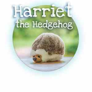 Fluff and Tuff Harriet Hedgehog
