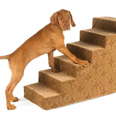 Bowsers Pet Products Pet Steps