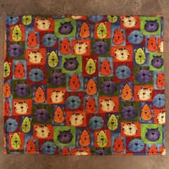 Catnip-Filled Sleeping Mat for Cats