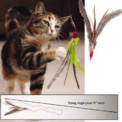 Da-Bird Cat Toy