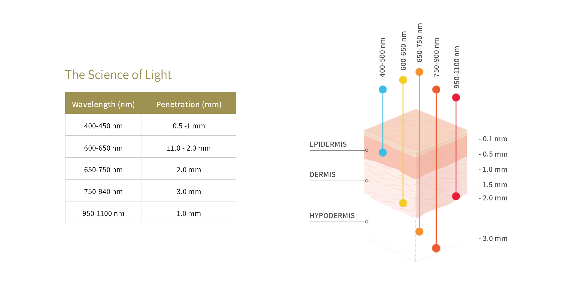 Perfectio Plus - The Science of Light