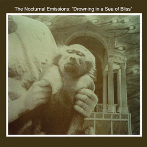 Nocturnal Emissions - Drowning in a Sea of Bliss