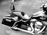 "Fortress Motorcycle Custom ""FLHRC"" Roadking sissybar luggage rack"