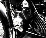 "Fortress Motorcycle custom ""Boothill"" horn cover"