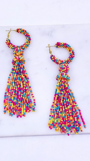 Little Bit Of Sass Earrings Multi
