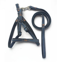 Load image into Gallery viewer, Adjustable Denim Harness and Leash Set