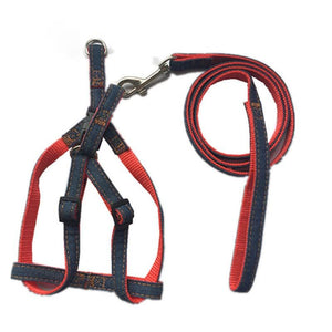 Adjustable Denim Harness and Leash Set