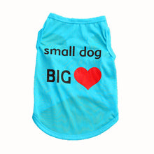 Load image into Gallery viewer, Cute Dog Shirt for Small Dog with a Big Heart