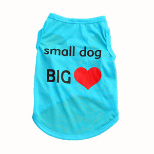 Cute Dog Shirt for Small Dog with a Big Heart