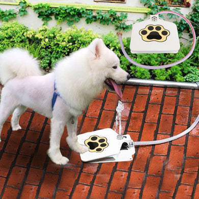Outdoor Dog Fountain/Water Toy