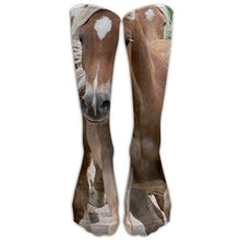 Load image into Gallery viewer, Women's Knee High 3D Horse Print Socks
