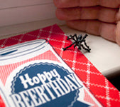 Two Trick Pony reuse cards spider