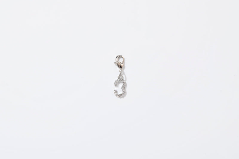 DIAMOND SILVER CHARMS