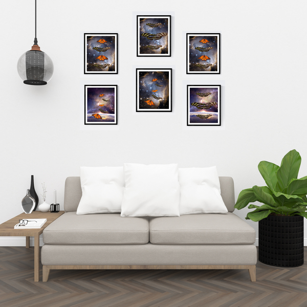 Butterfly Photography Print Set | Set of 6 Wall Art at 40% off