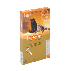 Advocate Cat Box of 4