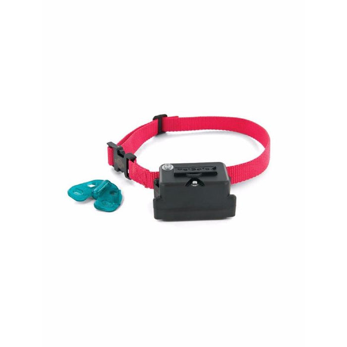 PetSafe Extra Collar for Stubborn Dog Fence System