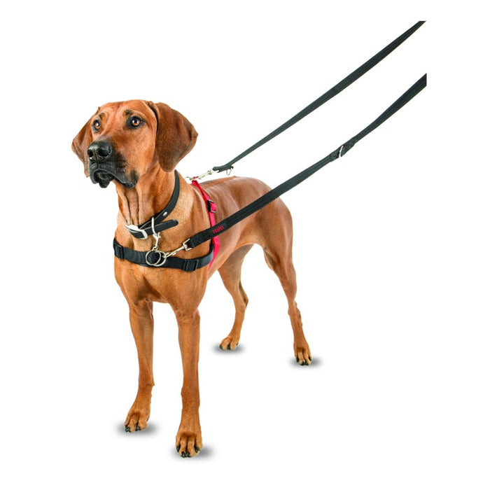 Company of Animals Halti Front Control Harness