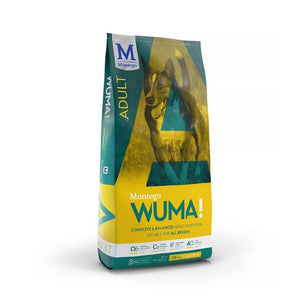 Montego WUMA! - Adult Dog