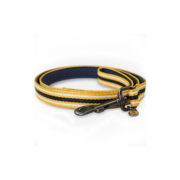 Rosewood and Joules Navy Coastal Lead