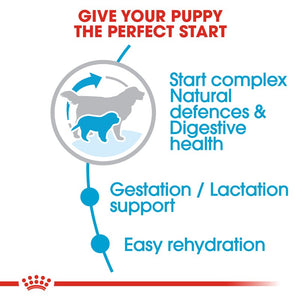 Royal Canin Giant Starter Mother & Baby Dog Infographic 2