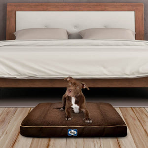 Sealy Cushy Comfort Orthopaedic Dog Bed - Brown