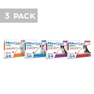 Nexgard for Dogs- 3 pack