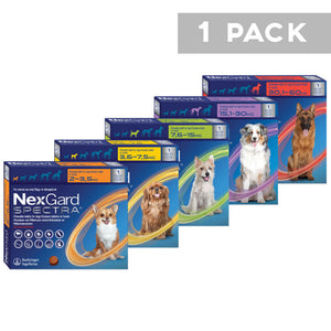 NexGard Spectra for Dogs- Single pack