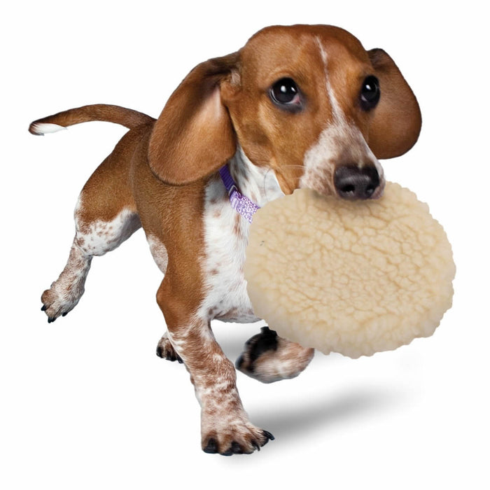PetSafe Busy Buddy Pogo Plush Ball