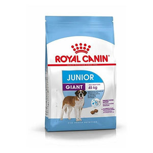 Royal Canin Giant Junior Dog