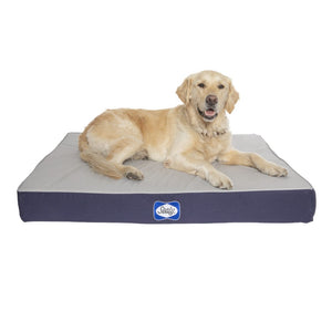 Sealy Defender Series Orthopaedic Dog Bed