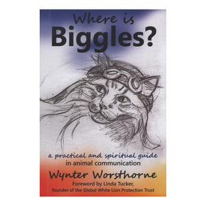 Where is Biggles?