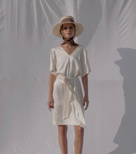 Anise | Silk V-neck Dress-Dresses-charlotte pringels-pu·rist