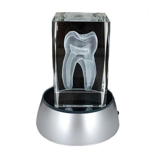 3D Glowing Tooth design Lamp Dental Gift - Dental Desire.com