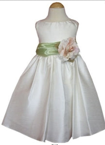 Organza Colored Sash