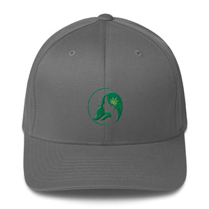 Fitted Twill Cap w/ Dark Green Logo