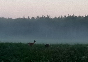 """Deer in the Mist"" by Tom Watson"
