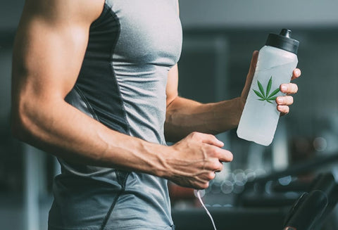 athletes taking cbd