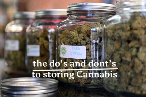 cannabis storing