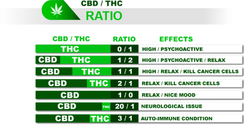 CBD to THC Ratio Explained