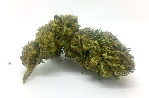 Otto 2 Franklin CBD Hemp Flower