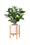 Bamboo Plant Stand Indoor Mid Century Adjustable Planter Wholesale