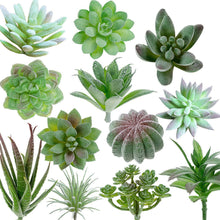 Load image into Gallery viewer, Artificial Succulents Plants 14 PCs