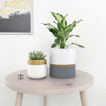 Load image into Gallery viewer, 2 Pcs Ceramic Pots Indoor Home Decor with Drainage Hole For Living Room