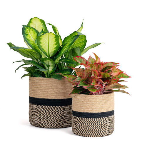 2-Pack Sturdy Jute Rope Plant Basket
