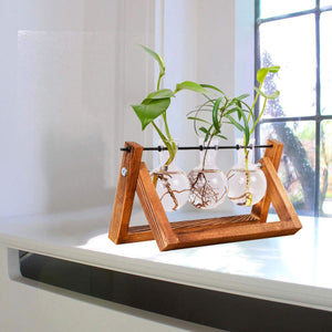 Tabletop Glass Planter